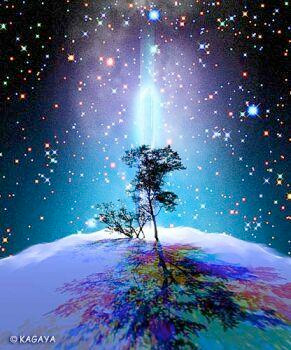 tree_light_earth